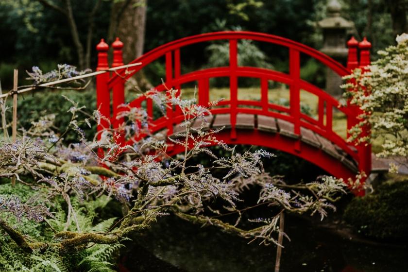 Japansetuin (21 van 38)